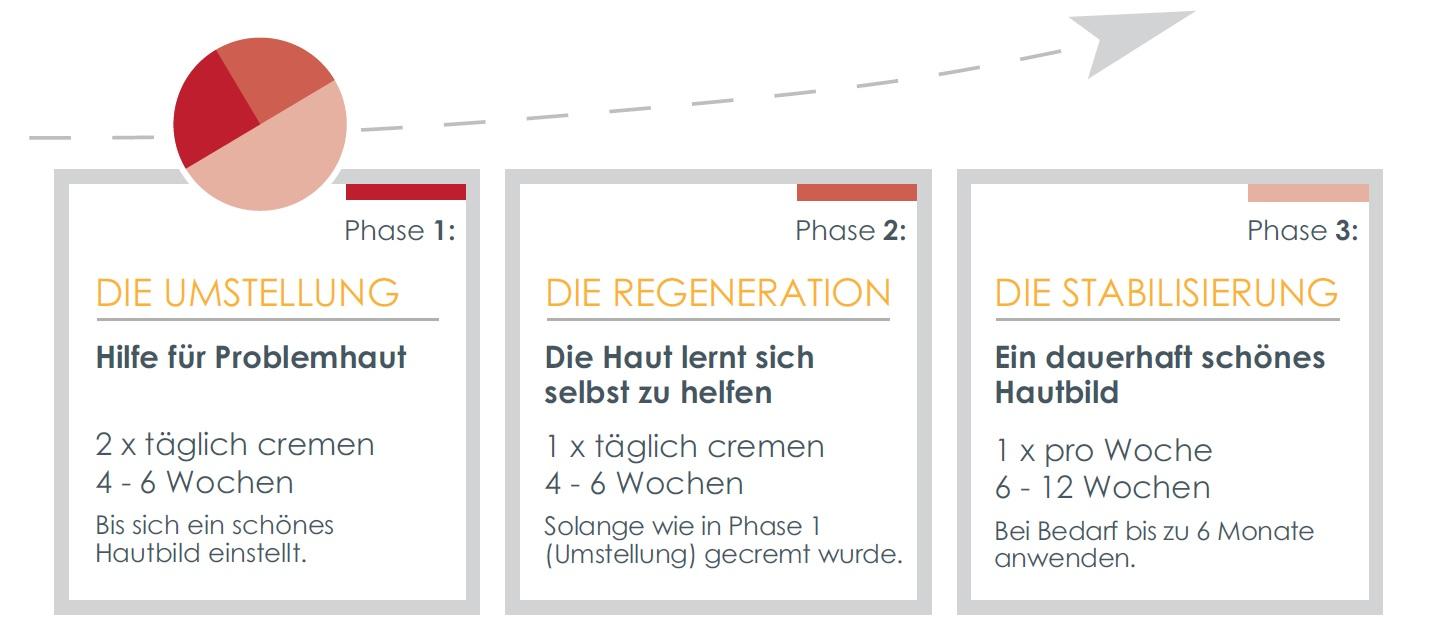 3_Phasen_DemoDerm_Anwendung